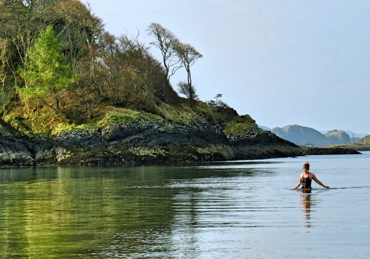 Views of the temperate rainforest and castle ruins at Stacey's favourite swim spot.