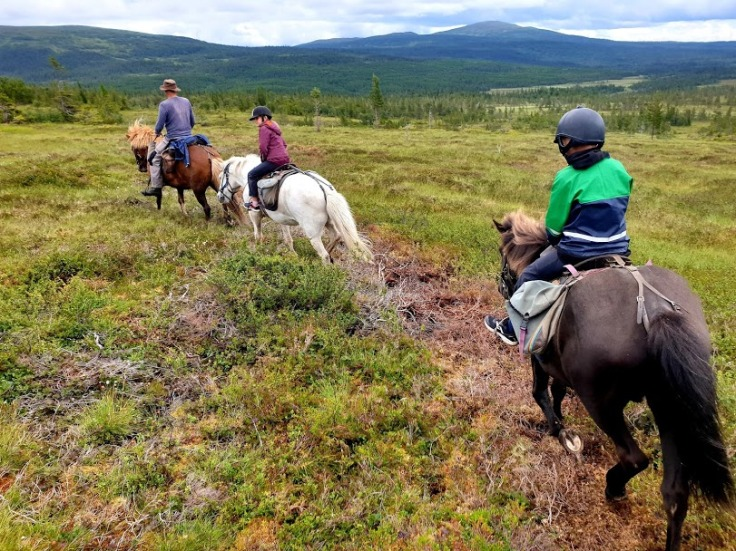 Horseback riding in Ottsjö, Matilda and Tom downhill from Hållfjället in full speed.